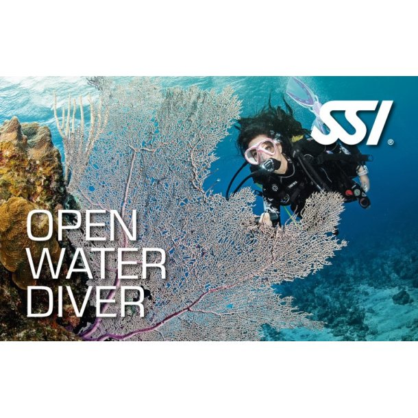 Open Water Begynderkursus inklusiv marinbiologi